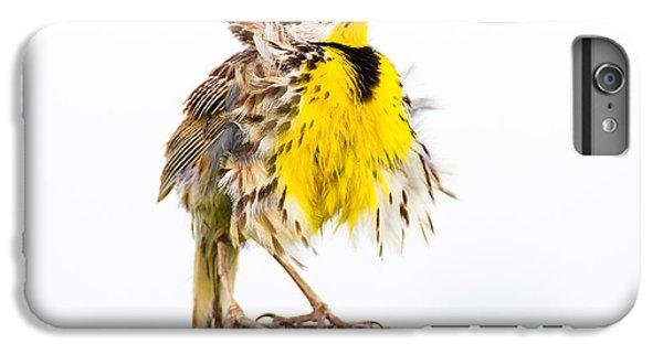 Meadowlark iPhone 6 Plus Case - Flluffy Meadowlark by Bill Swindaman