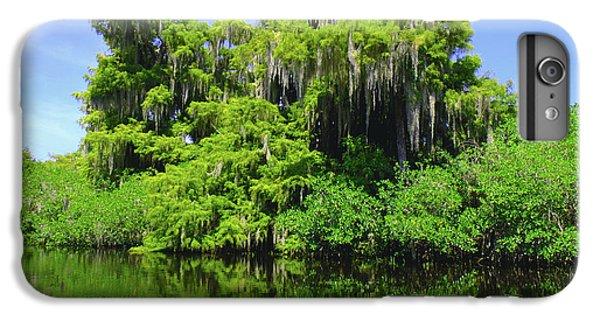 Crocodile iPhone 6 Plus Case - Florida Swamps by Carey Chen