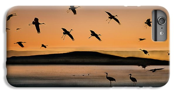 Fly-in At Sunset IPhone 6 Plus Case