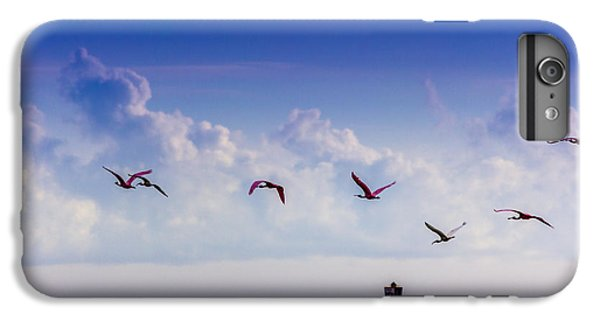 Ibis iPhone 6 Plus Case - Flying Free by Marvin Spates