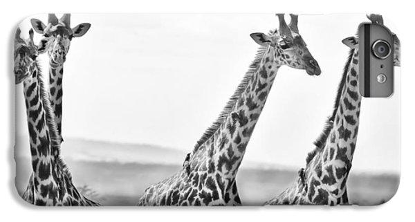 Four Giraffes IPhone 6 Plus Case