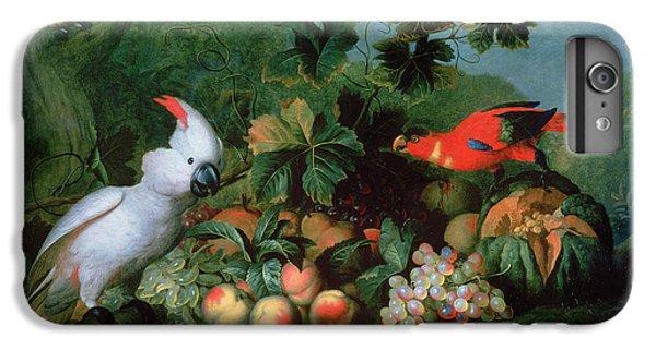 Cockatoo iPhone 6 Plus Case - Fruit And Birds by Jakob Bogdani or Bogdany