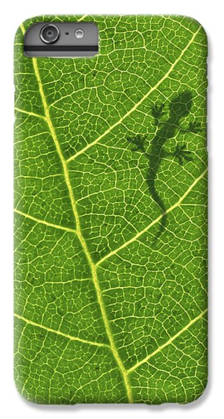 Salamanders iPhone 6 Plus Case - Gecko by Aged Pixel