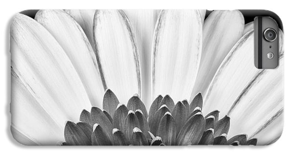 Daisy iPhone 6 Plus Case - Gerbera Rising by Adam Romanowicz