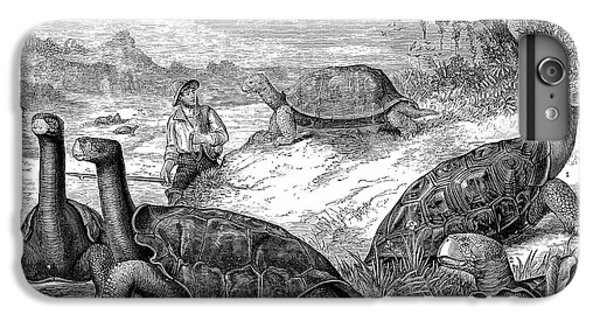 Tortoise iPhone 6 Plus Case - Giant Land Tortoises by Universal History Archive/uig