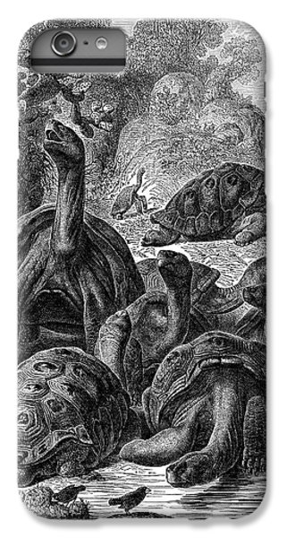Tortoise iPhone 6 Plus Case - Giant Tortoises Of The Galapagos Islands by Universal History Archive/uig