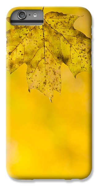 IPhone 6 Plus Case featuring the photograph Golden Autumn by Sebastian Musial