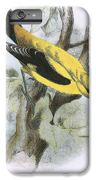 Golden Oriole IPhone 6 Plus Case