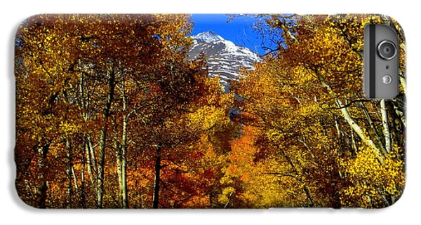 IPhone 6 Plus Case featuring the photograph Golden Tunnel by Karen Shackles
