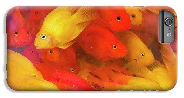 Goldfish At Goldfish Market, Hong Kong IPhone 6 Plus Case
