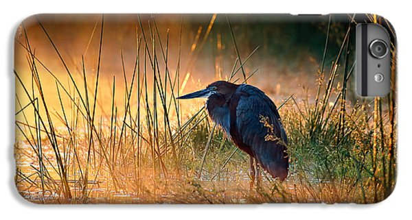 Heron iPhone 6 Plus Case - Goliath Heron With Sunrise Over Misty River by Johan Swanepoel