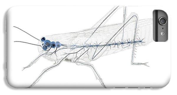 Grasshopper iPhone 6 Plus Case - Grasshopper Nervous System by Peter Matulavich
