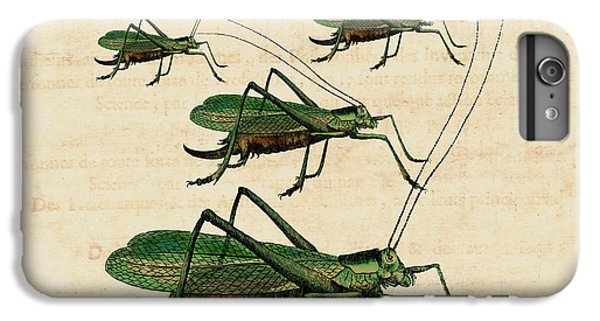 Grasshopper Parade IPhone 6 Plus Case