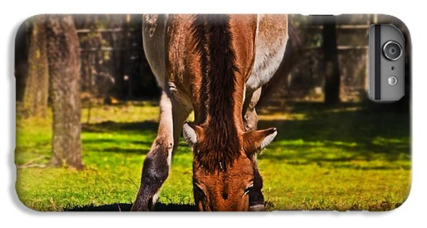 Grazing With An Attitude IPhone 6 Plus Case