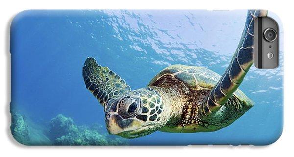 Green Sea Turtle - Maui IPhone 6 Plus Case