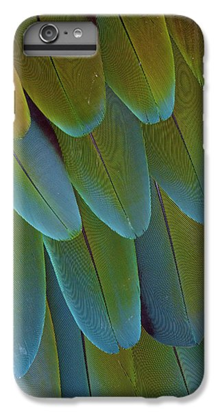 Green-winged Macaw Wing Feathers IPhone 6 Plus Case by Darrell Gulin