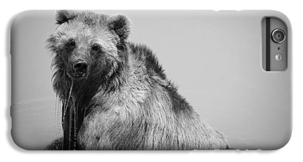 Grizzly Bear Bath Time IPhone 6 Plus Case by Karen Shackles