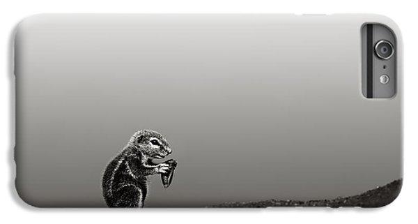 Squirrel iPhone 6 Plus Case - Ground Squirrel by Johan Swanepoel