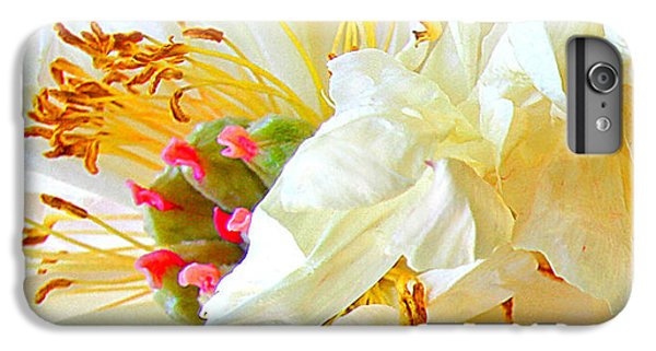 Heart Of Peony IPhone 6 Plus Case by Nareeta Martin