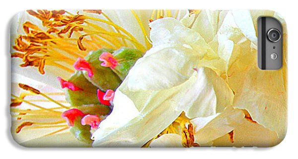 IPhone 6 Plus Case featuring the photograph Heart Of Peony by Nareeta Martin