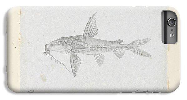 Catfish iPhone 6 Plus Case - Hemidoras Stenopeltis by Natural History Museum, London