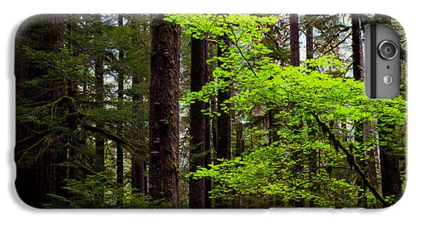 Nature Trail iPhone 6 Plus Case - Highlight by Chad Dutson
