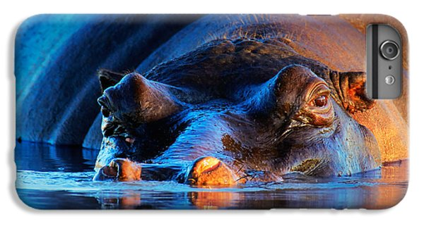 Hippopotamus  At Sunset IPhone 6 Plus Case by Johan Swanepoel