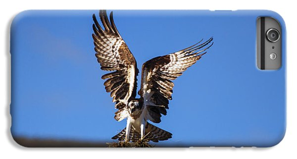 Osprey iPhone 6 Plus Case - Homebuilder by Mike  Dawson
