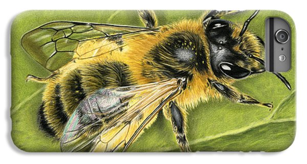 Honeybee iPhone 6 Plus Case - Honeybee On Leaf by Sarah Batalka