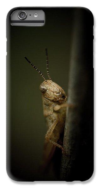 Grasshopper iPhone 6 Plus Case - hop by Shane Holsclaw