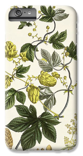 Hop Vine From The Young Landsman IPhone 6 Plus Case