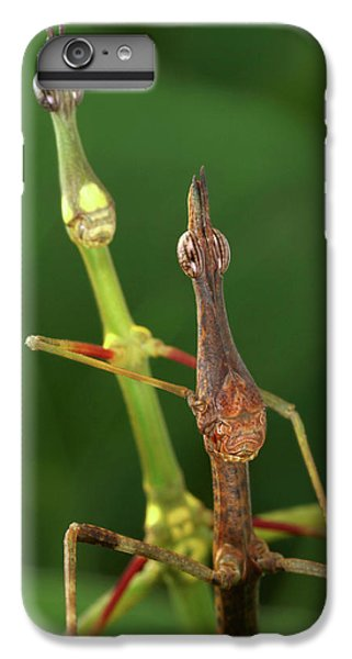 Grasshopper iPhone 6 Plus Case - Horsehead Grasshoppers by Tomasz Litwin