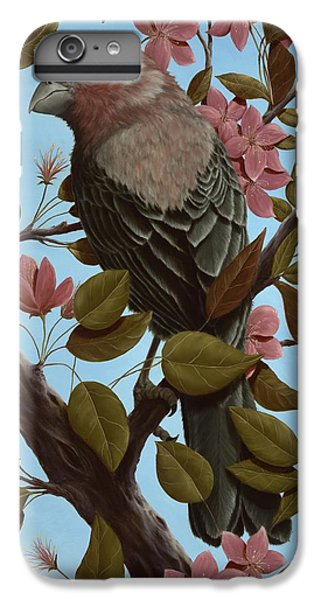 House Finch IPhone 6 Plus Case