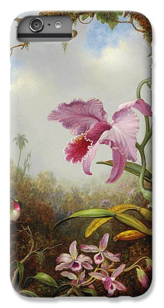 Orchid iPhone 6 Plus Case - Hummingbird And Two Types Of Orchids by Martin Johnson Heade