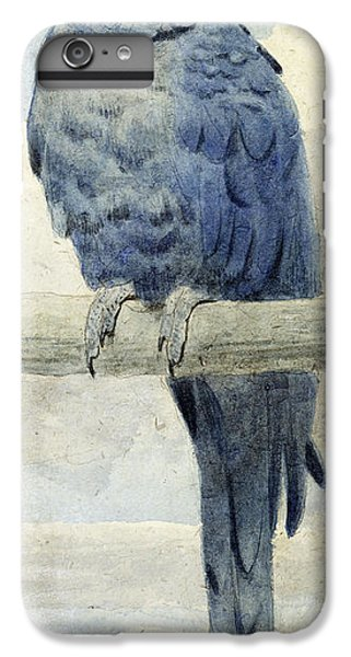 Macaw iPhone 6 Plus Case - Hyacinthine Macaw by Henry Stacey Marks