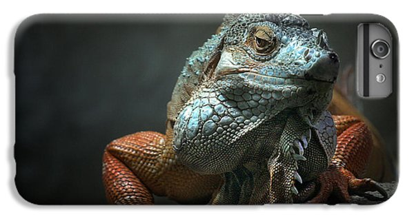 Dragon iPhone 6 Plus Case - I Am The King ,.. Who Else ! by Holger Droste