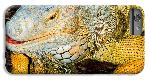 Python iPhone 6 Plus Case - Iggy by Carey Chen