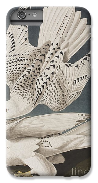 Illustration From Birds Of America IPhone 6 Plus Case by John James Audubon