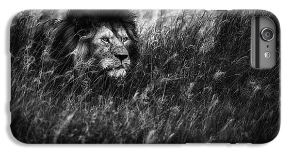 Lion iPhone 6 Plus Case - Immortal by Mohammed Alnaser