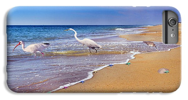 Ibis iPhone 6 Plus Case - Inspiring Ibis Egret Sandpiper Starfish Sand Dollars  by Betsy Knapp