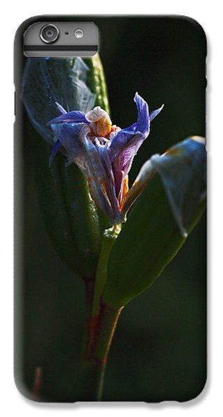 Iris Emerging  IPhone 6 Plus Case
