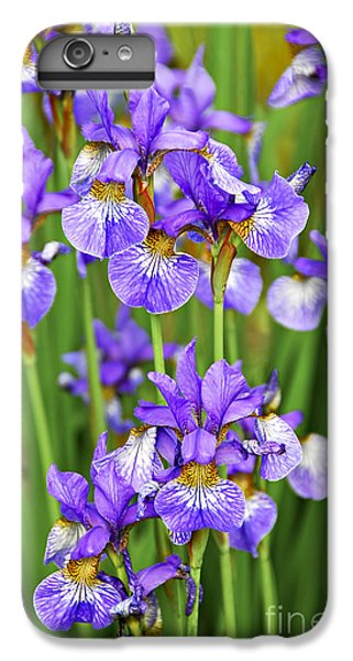 Irises IPhone 6 Plus Case by Elena Elisseeva