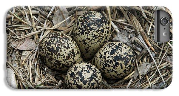 Killdeer iPhone 6 Plus Case - Killdeer Eggs In Nest by Linda Freshwaters Arndt