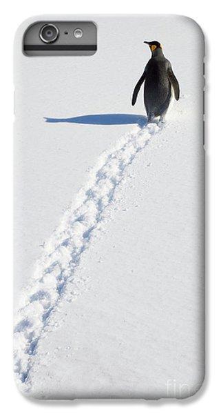 King Penguin And Tracks S Georgia Island IPhone 6 Plus Case by Yva Momatiuk and John Eastcott
