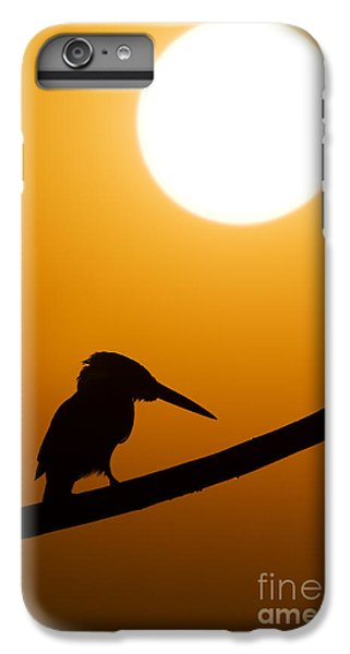 Kingfisher Sunset Silhouette IPhone 6 Plus Case
