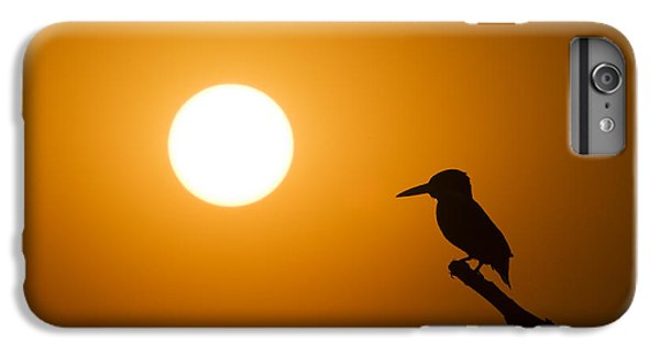 Kingfisher iPhone 6 Plus Case - Kingfisher Sunset by Tim Gainey