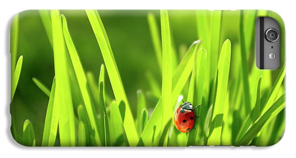 Green iPhone 6 Plus Case - Ladybug In Grass by Carlos Caetano