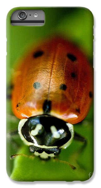 Ladybug On Green IPhone 6 Plus Case by Iris Richardson
