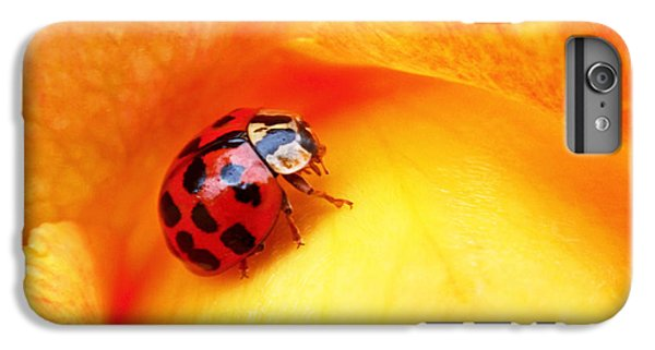 Ladybug IPhone 6 Plus Case