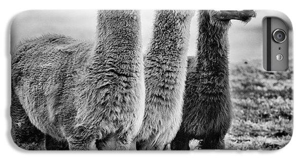 Rural Scenes iPhone 6 Plus Case - Lama Lineup by John Farnan
